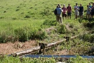Das Schafsbrünnerl auf dem Winnberg
